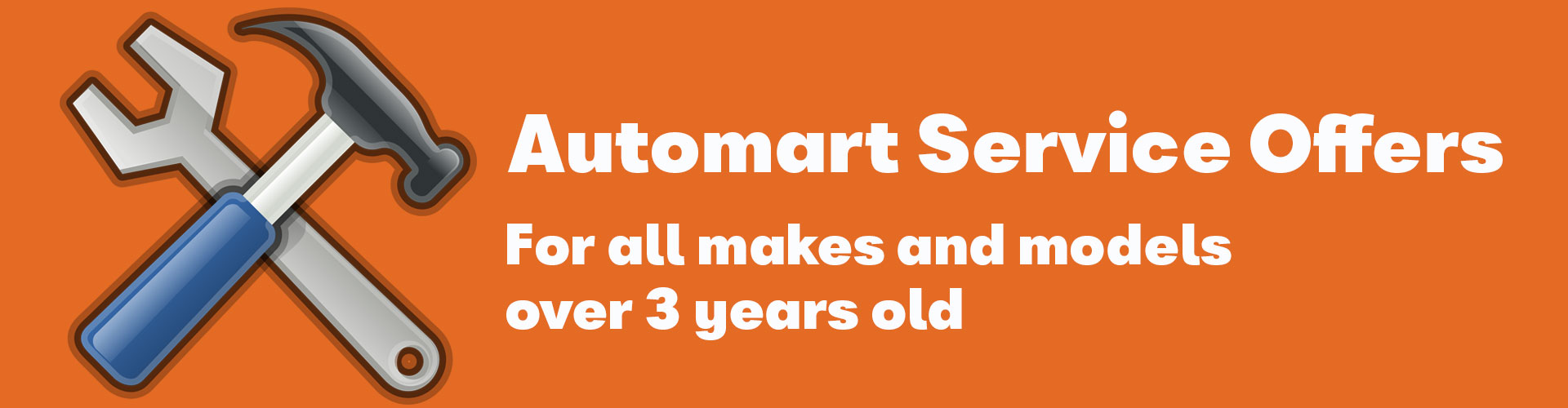 Automart servicing for all makes and models over 3 year old.
